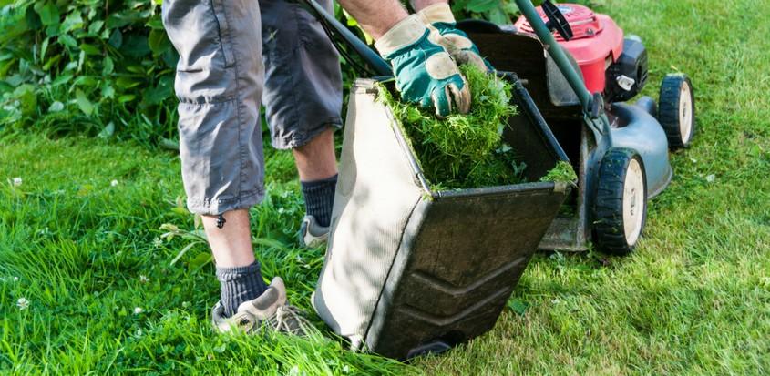 Homme en train de tondre sa pelouse