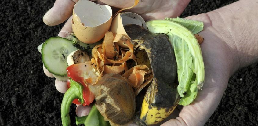 Main tenant des matières compostables