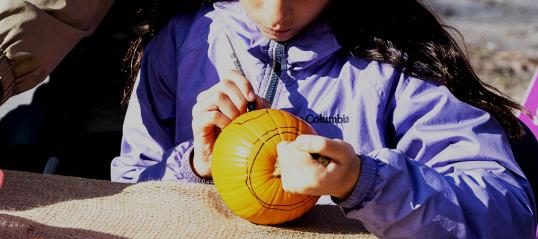 Mascouche dévoile sa programmation d'activités pour l'automne